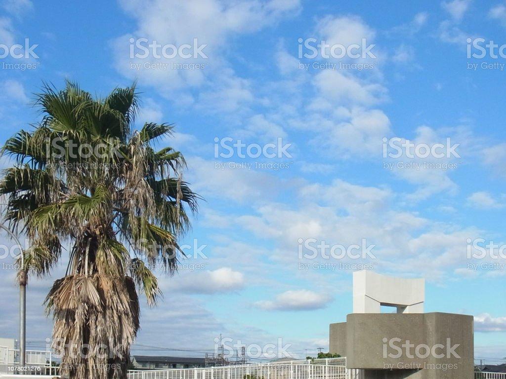 青い空とヤシの木。 ストックフォト