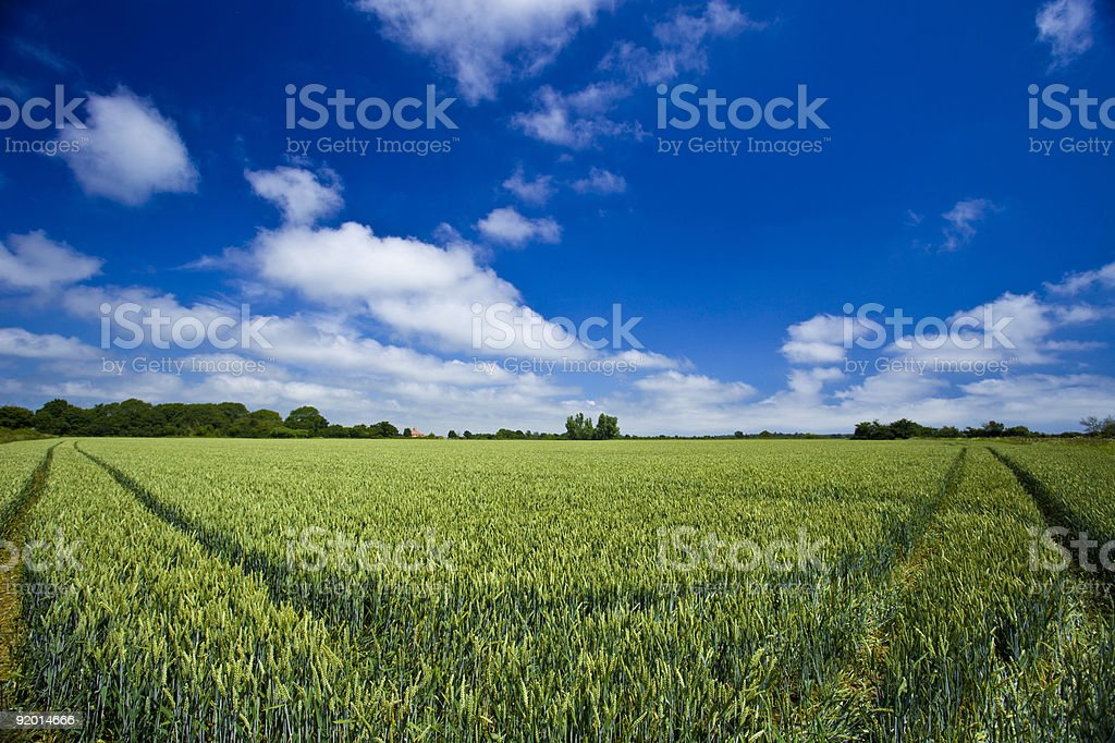 Blue sky and smiling farm land royalty-free stock photo