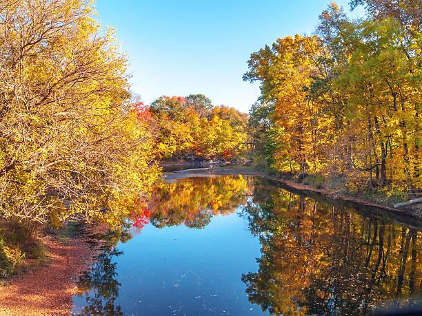Blue Sky Autumn Pond stock photo