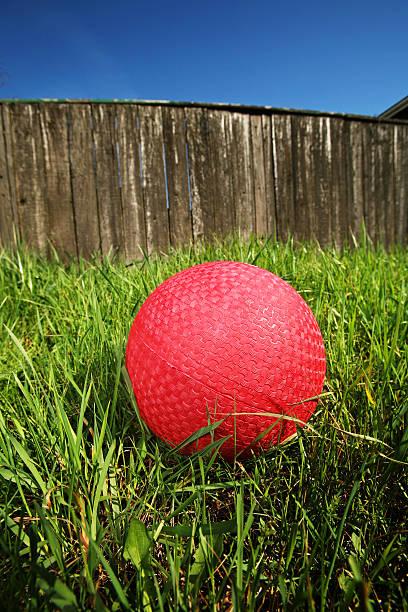 Blue Sky Dodge Ball on Grass stock photo