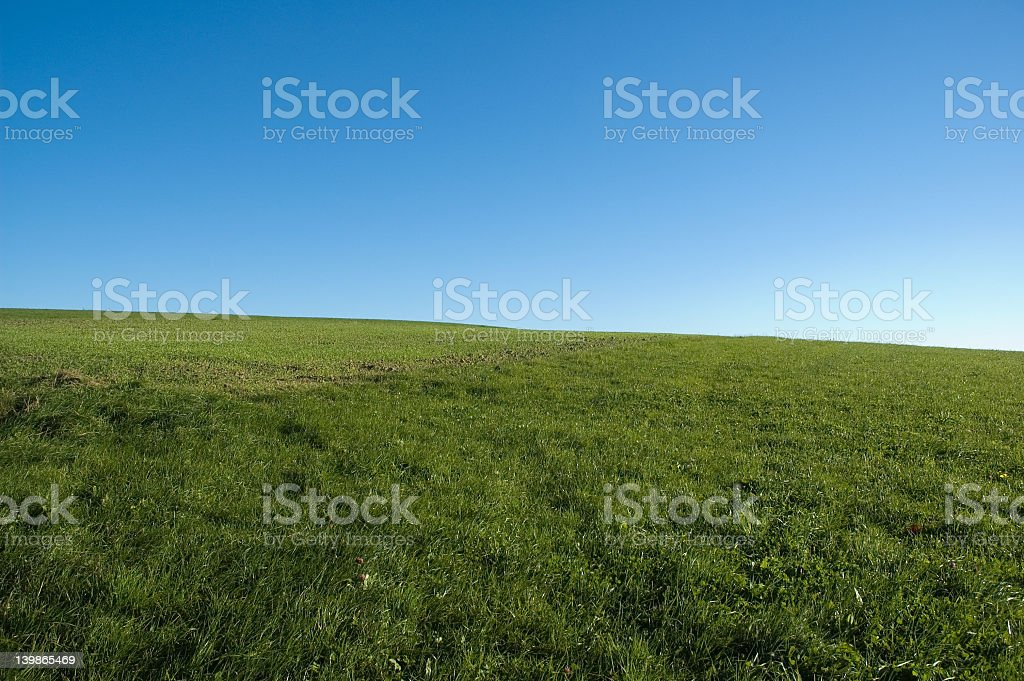 blue sky, green grass royalty-free stock photo