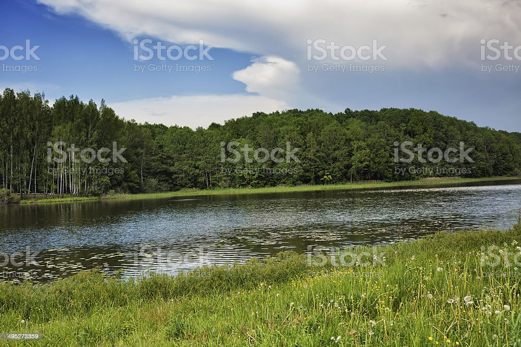 Blue sky, green wood, river and meadow royalty-free stock photo