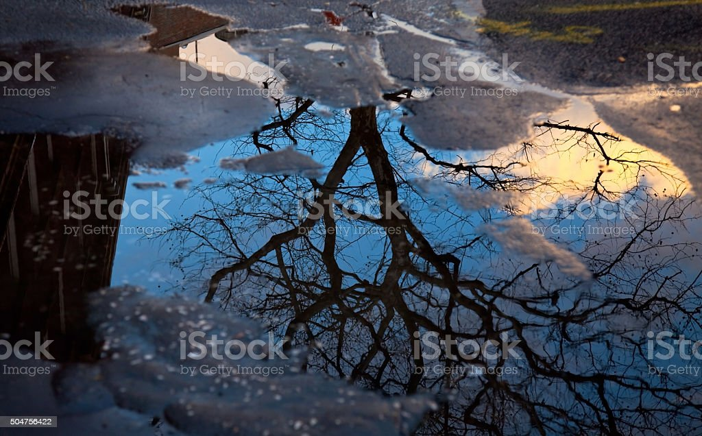 Blue sky in a puddle stock photo