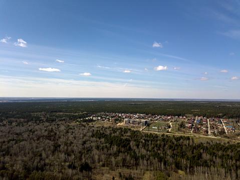 森林中的藍天 照片檔及更多 俄羅斯 照片