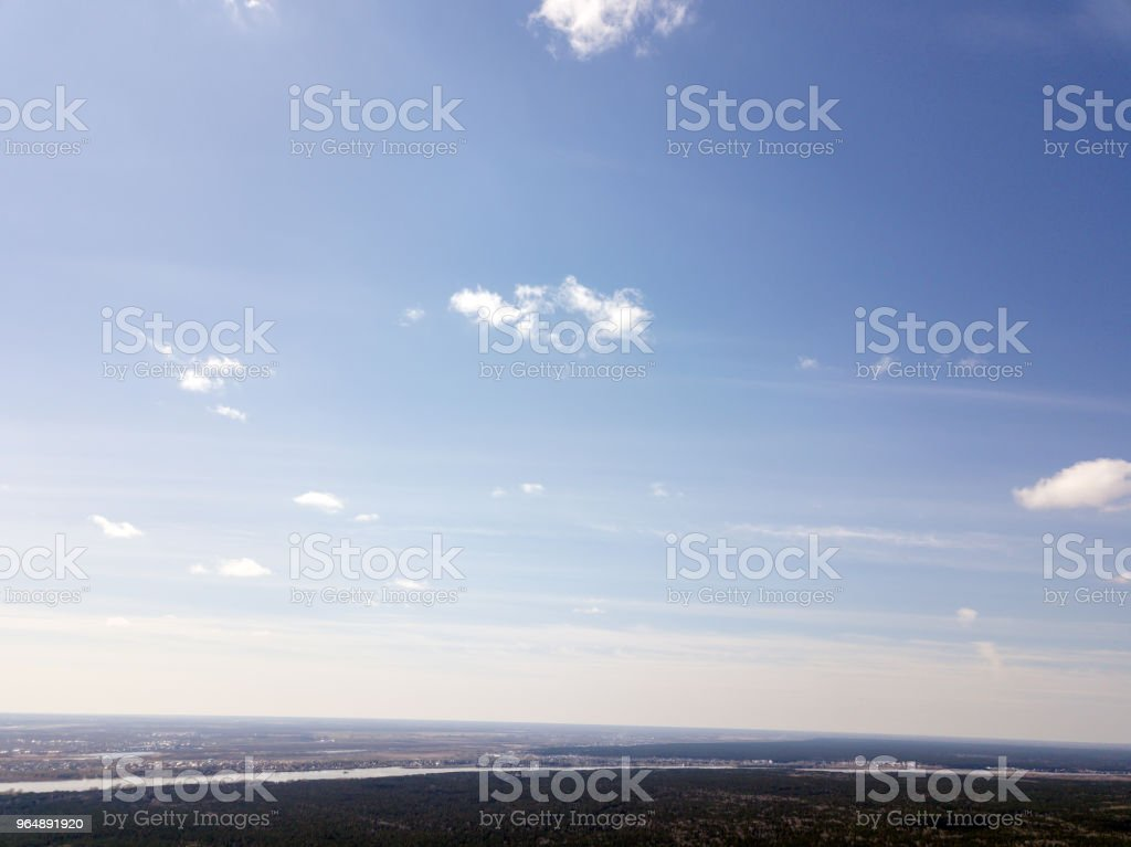 Blue sky in forest royalty-free stock photo