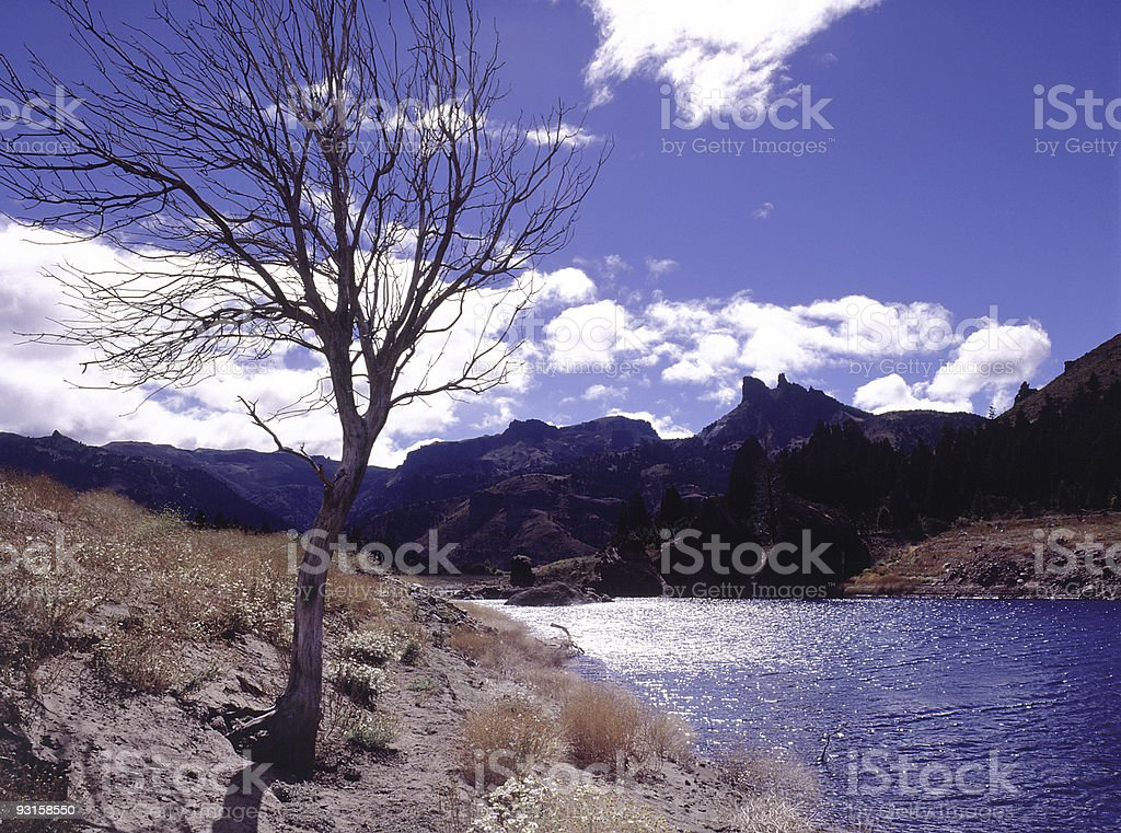 Blue sky over argentine valley royalty-free stock photo
