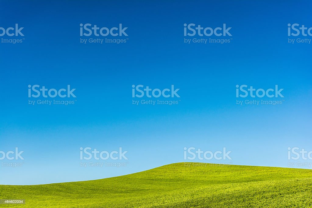 Blue Sky Over Green Rolling Fields Rolling fields of green with clear blue sky above.  Image taken July 2014 near Rockford, Washington, USA. 2015 Stock Photo