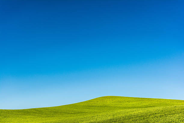 Blue Sky Over Green Rolling Fields stock photo