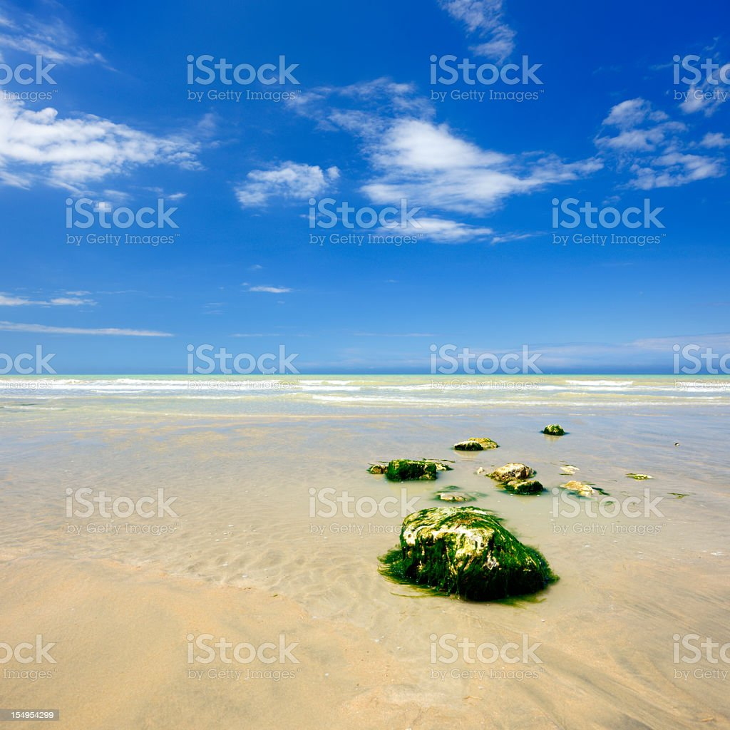 Blue Sky over Sand Beach with Algae Covered Rocks royalty-free stock photo