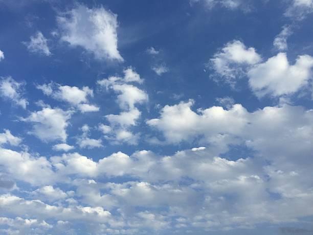 blue sky - serpilguler stok fotoğraflar ve resimler