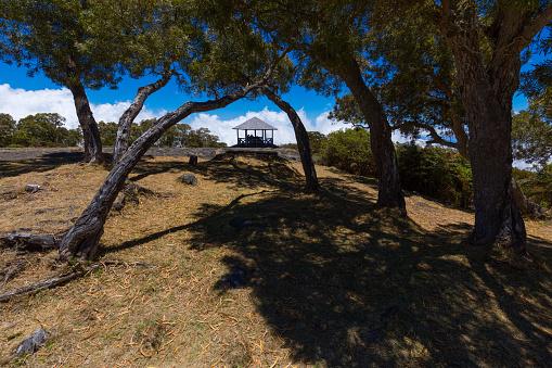 리유니언 섬 세인트 폴에서 우물에서 나무 푸른 하늘 0명에 대한 스톡 사진 및 기타 이미지