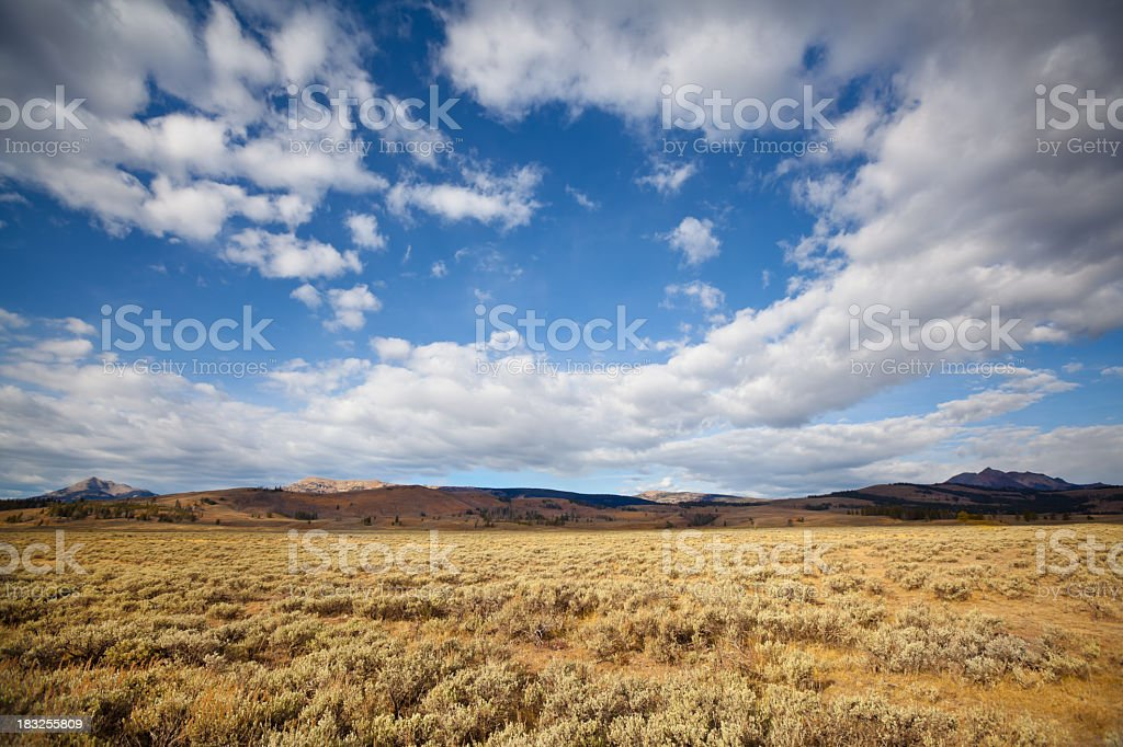 Blue sky with clouds and a large brown field stock photo