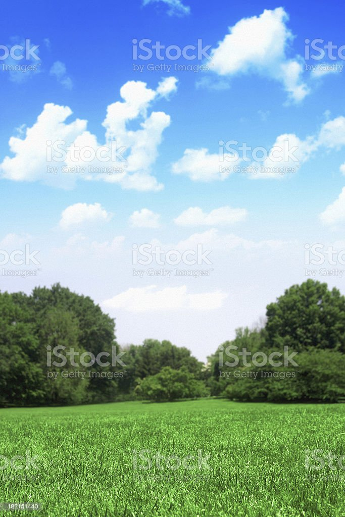 Blue Sky With Puffy White Clouds Over Green Grass stock photo