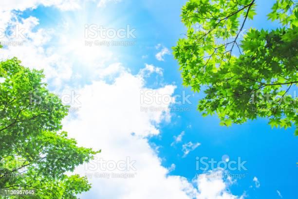 Photo of blue sky with sun
