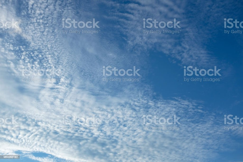 Blue sky with white cloud background - Royalty-free Backgrounds Stock Photo