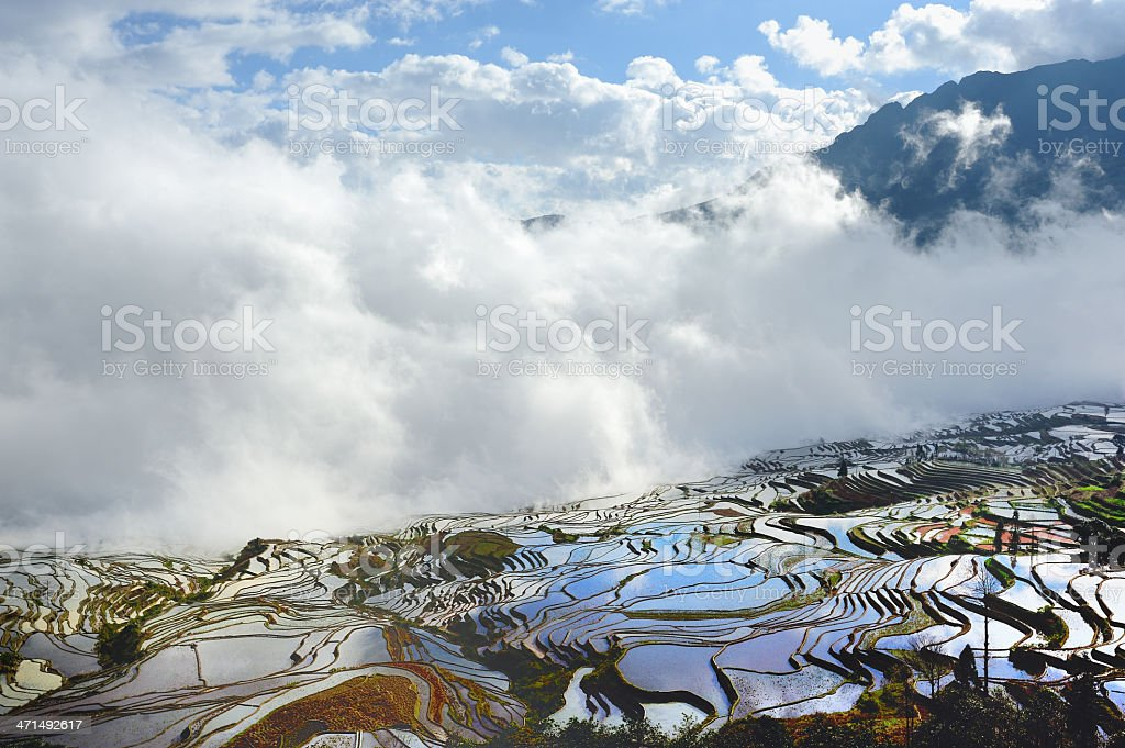 Blue sky,white clouds and terraces royalty-free stock photo