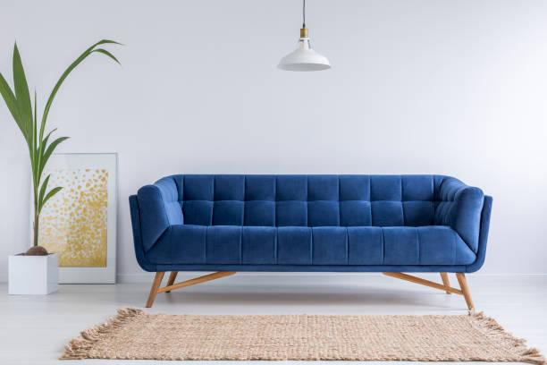 canapé bleu et tapis en osier - imitant un animal photos et images de collection