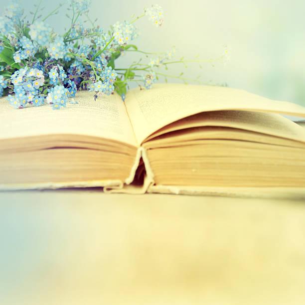 blauen frühlingsblumen auf eine bibel seite. - verse zur hochzeit stock-fotos und bilder
