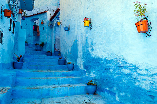 blue staircase & colourful flowerpots, chefchaouen,morocco,north africa - travel destinations stock photos and pictures