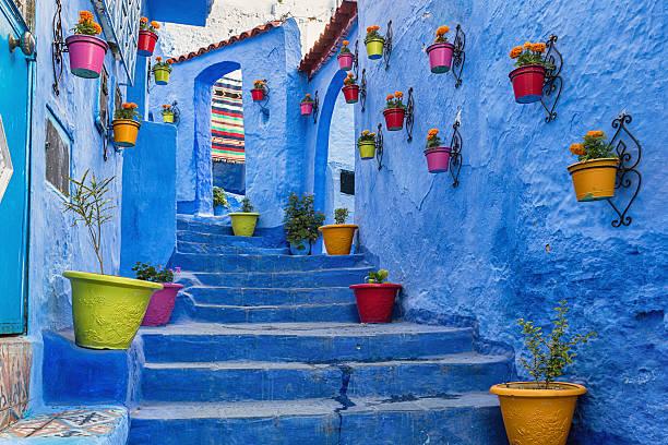 blue stairway with colourful flowerpots. - marocko bildbanksfoton och bilder