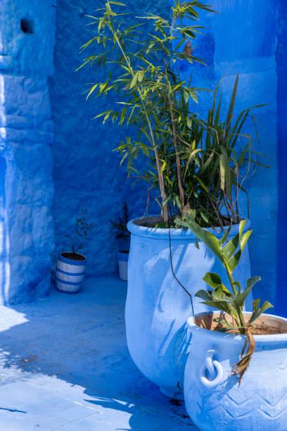 Blue street of Chefchaouen - foto stock