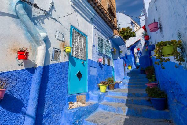 blaue straße mit farbe töpfe in chefchaouen - ein topf wunder stock-fotos und bilder