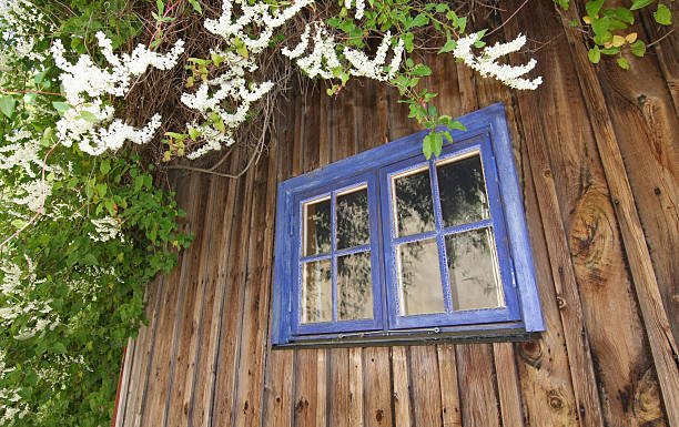 Blue Summer Window bildbanksfoto