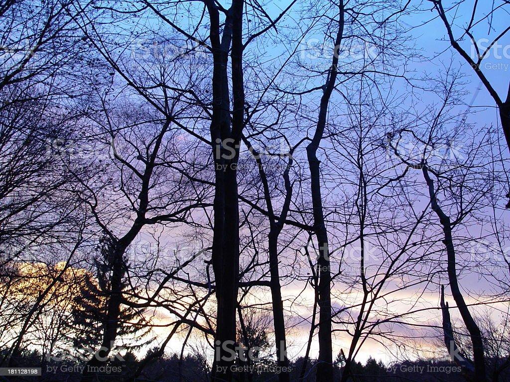 Blue Sunset royalty-free stock photo