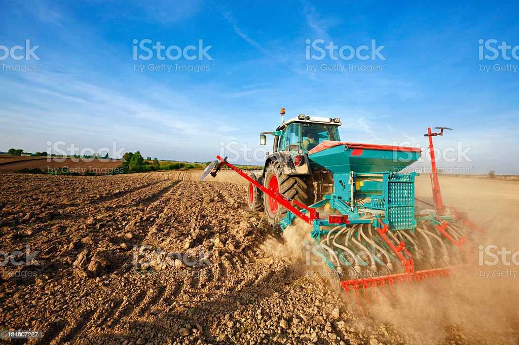 Blue tractor sowing wheat royalty-free stock photo