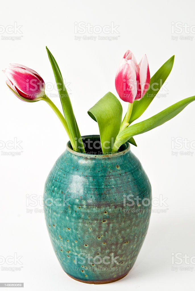 Blue Vase With Pink Tulips royalty-free stock photo