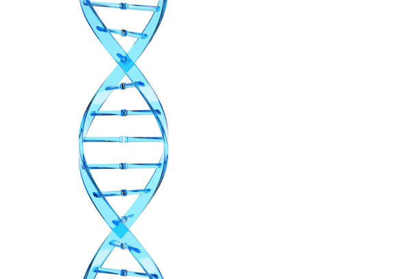 Blue vertical DNA chain stock photo