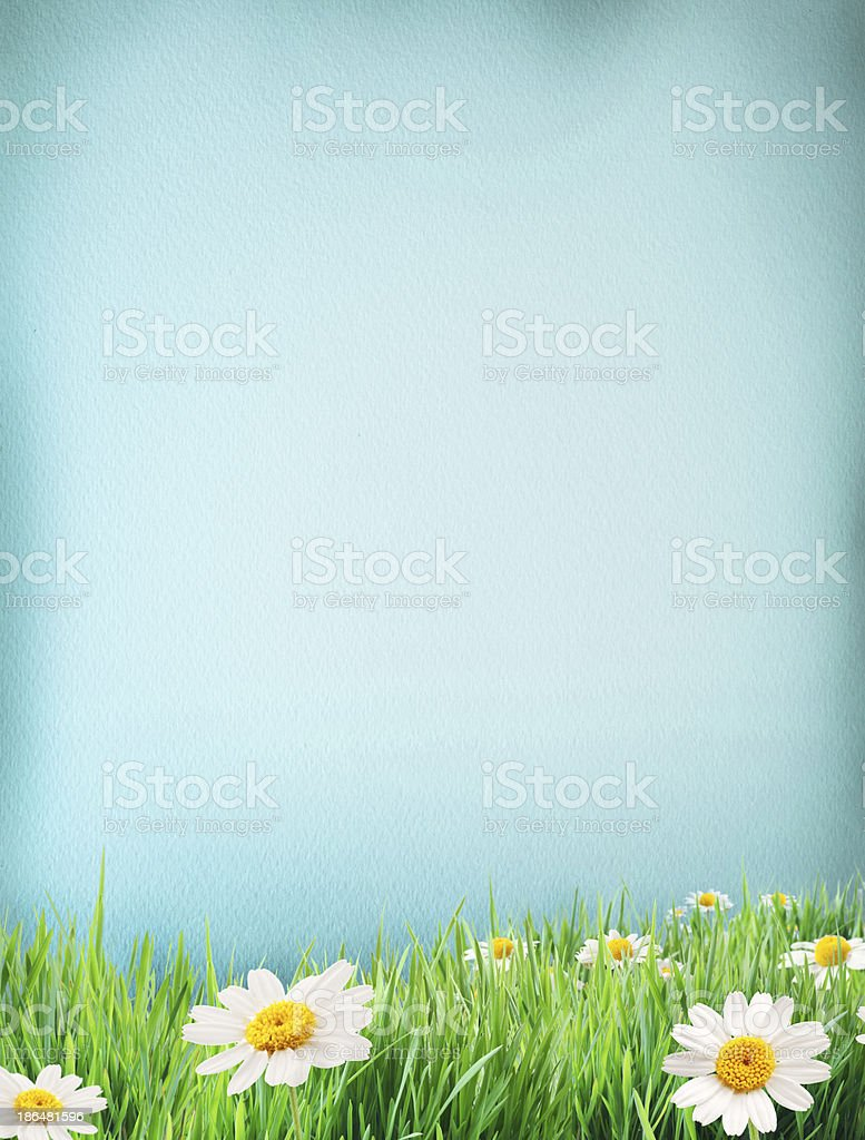 Blue water colour paper bodered with grass and flowers. royalty-free stock photo