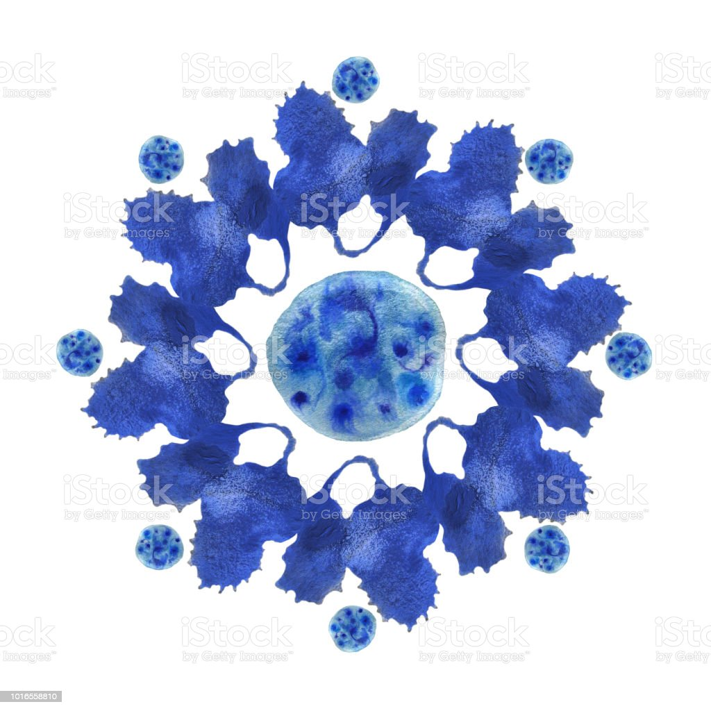 blue watercolor flower stock photo