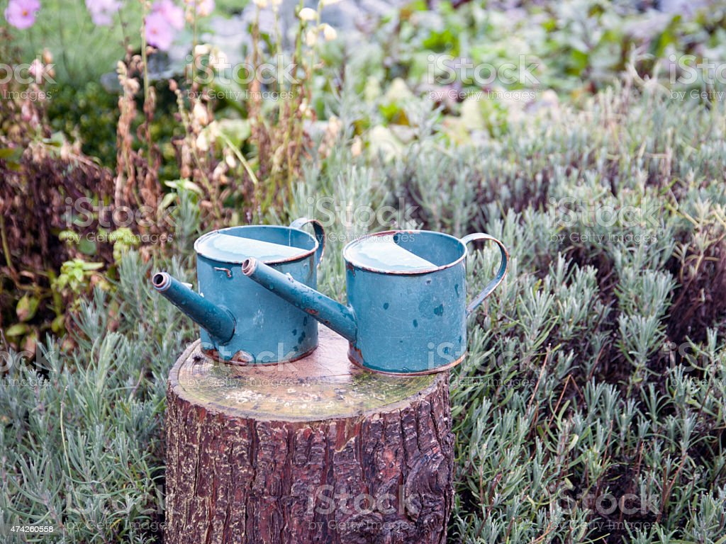 Blue Watering Cans stock photo