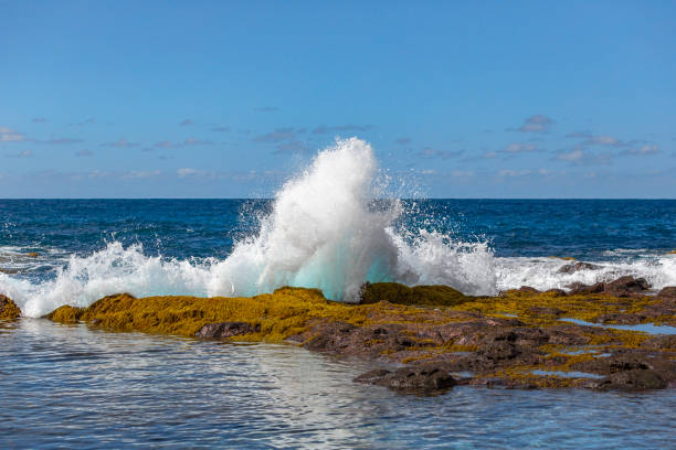 A blue wave breaking into the rocks and making a big splash in Tenerife, Canary Islands, Spain stock photo