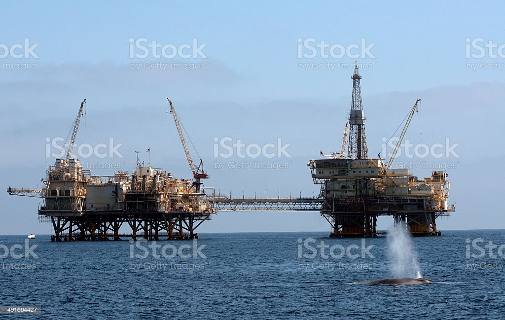 Blue Whale and Oil Platform stock photo
