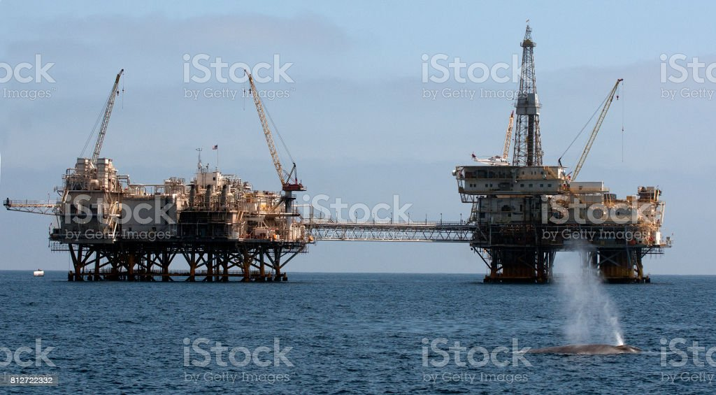 Blue whale and oil rig royalty-free stock photo