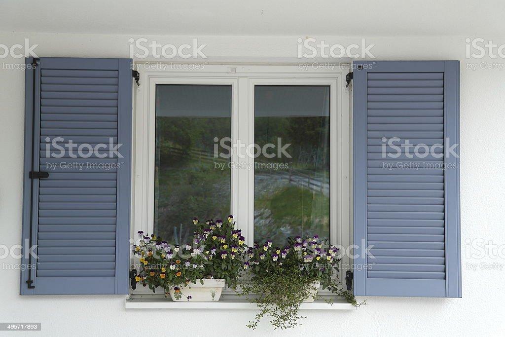 blue window shutter stock photo