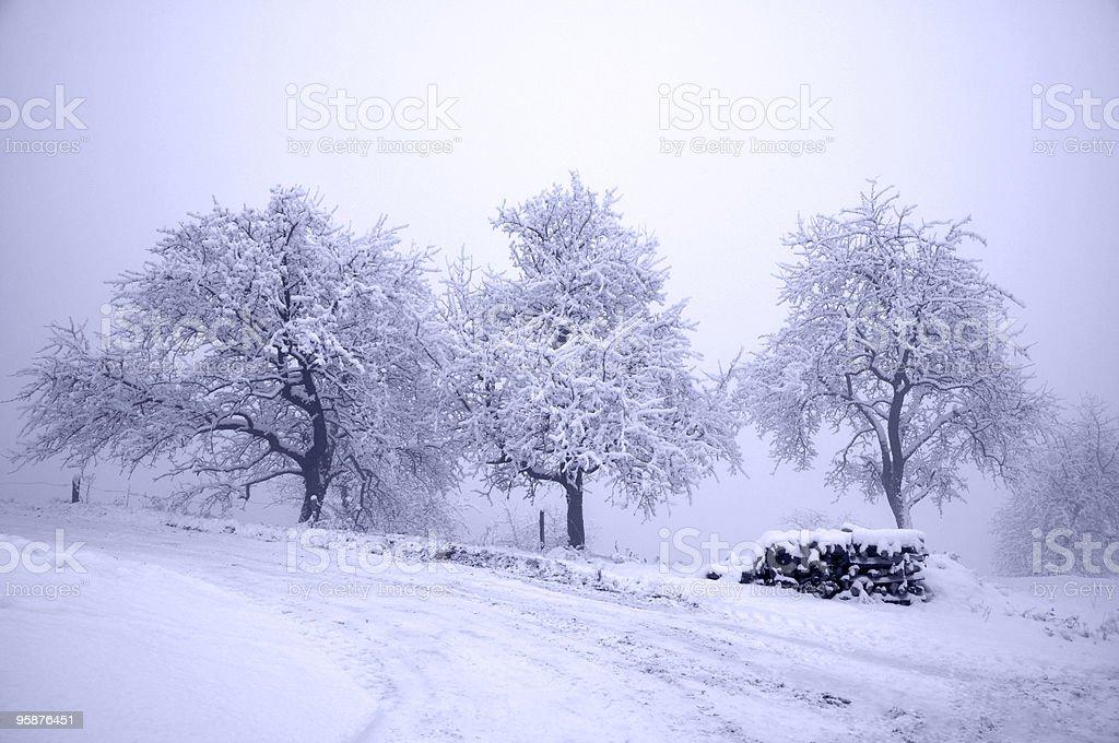 青い冬の - かすみのロイヤリティフリーストックフォト
