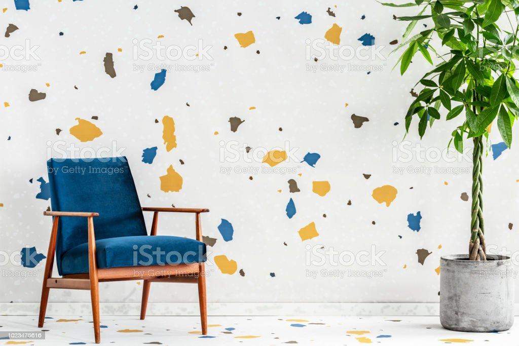 Fauteuil En Bois Bleu Et Plante En Intérieur De Salon Moderne Avec ...