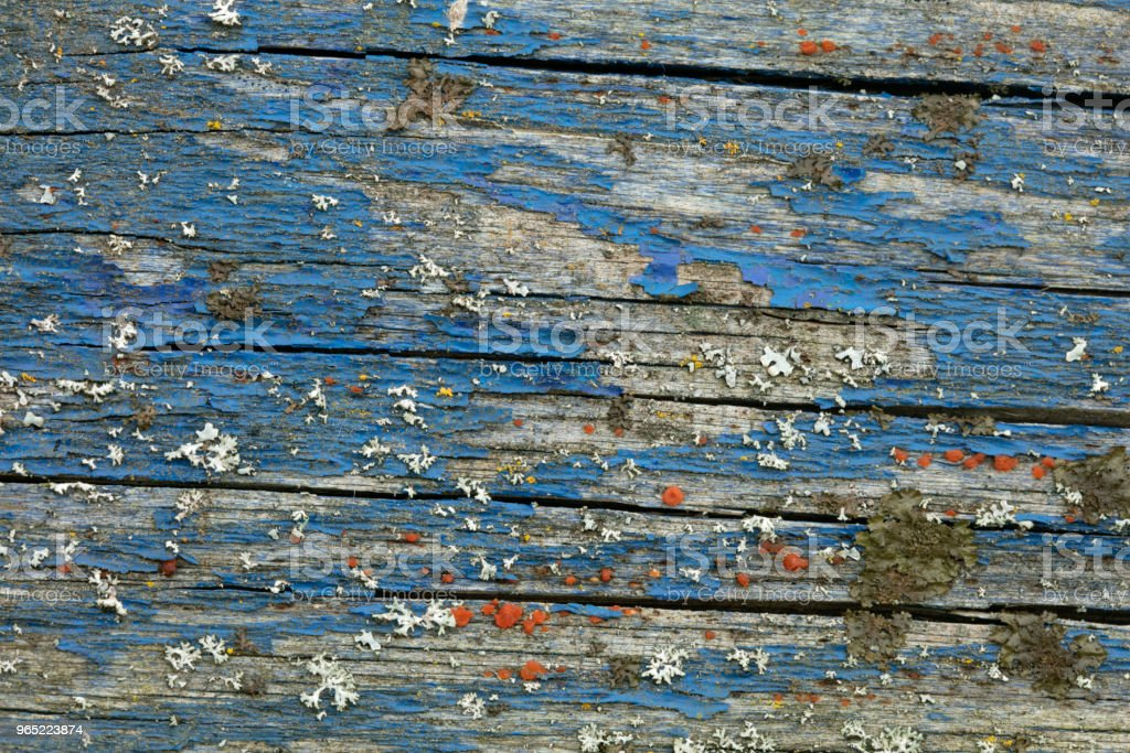 Blue Wooden Background zbiór zdjęć royalty-free