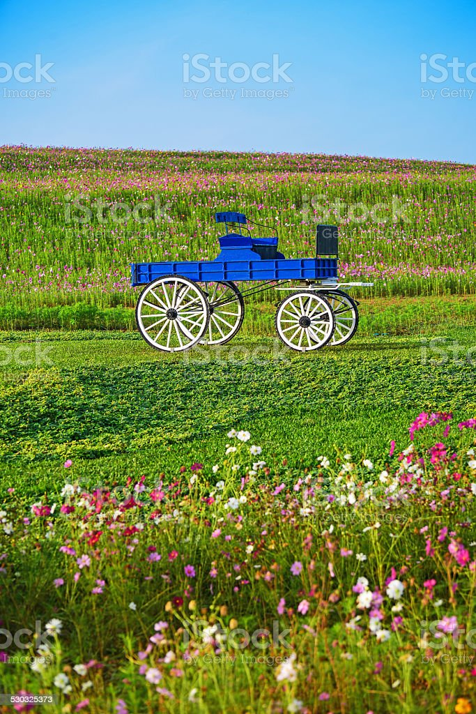 Blue wooden cart in Boon Rawd Farm stock photo