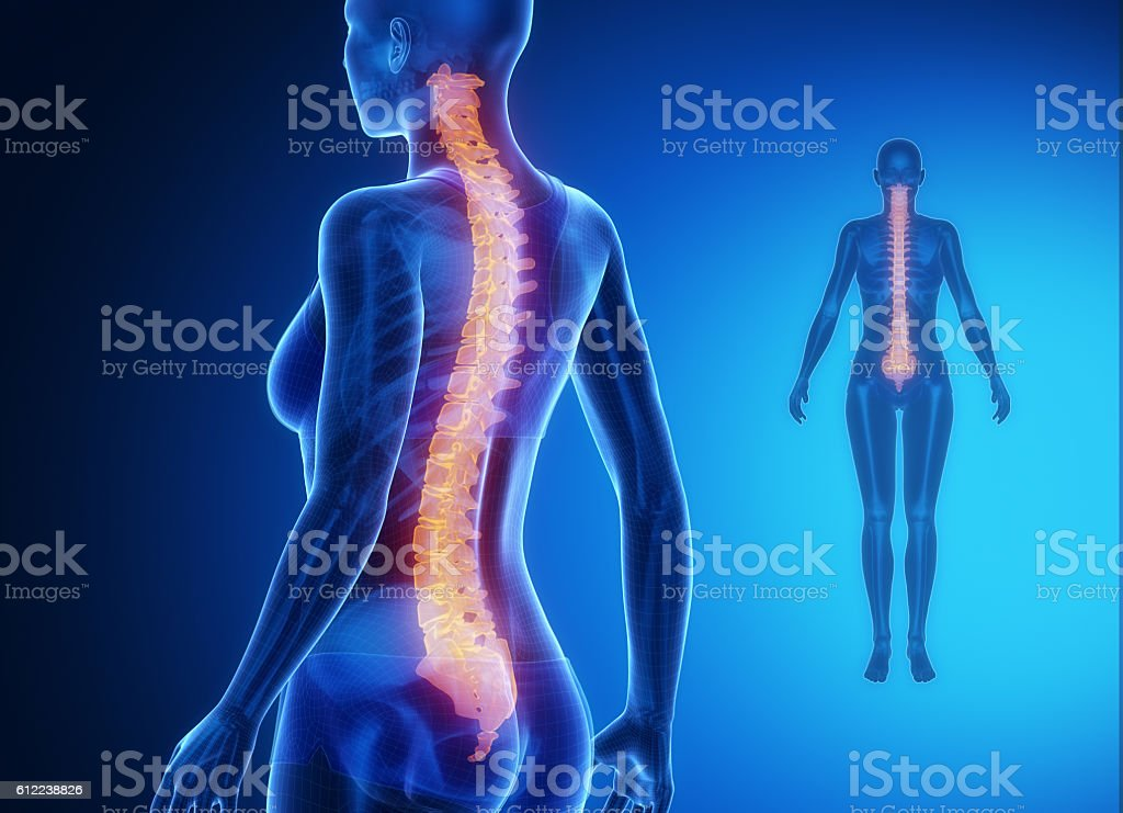 SPINE blue x--ray bone scan stock photo
