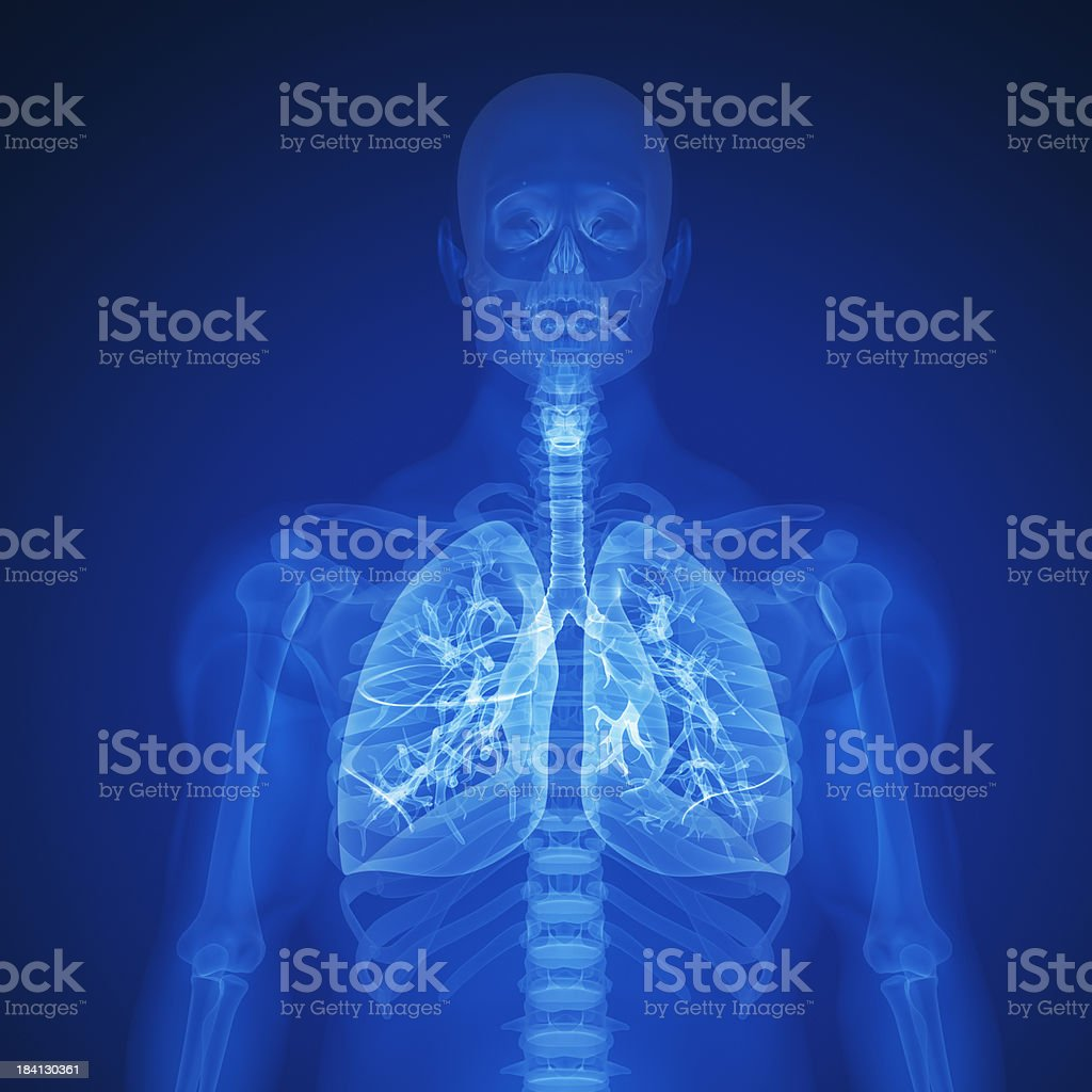 Blue X-ray of human lungs and upper torso stock photo