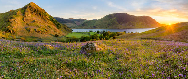 Bluebell Panorama At Rannerdale In Lake District Beautiful sunset at Rannerdale Knots in the Lake District with bluebells and evening light shining on rock. cumbria stock pictures, royalty-free photos & images