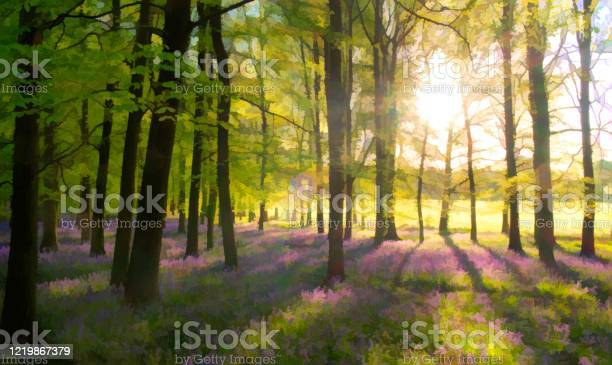 Photo of Bluebells In A Painterly Style