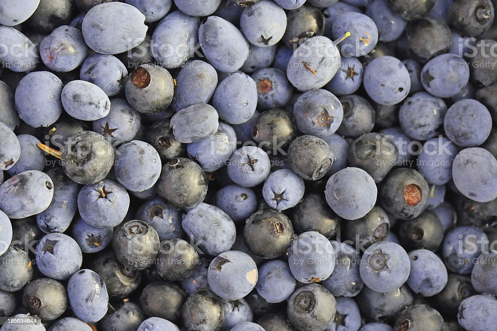 Blueberries and bilberries royalty-free stock photo