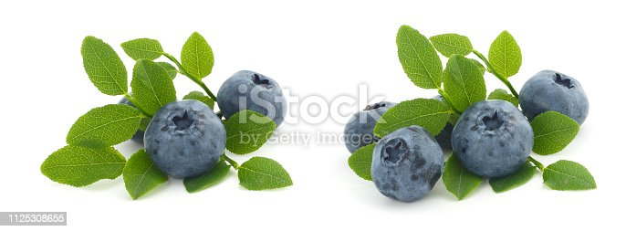 853493518 istock photo Blueberries and leaves isolated 1125308655