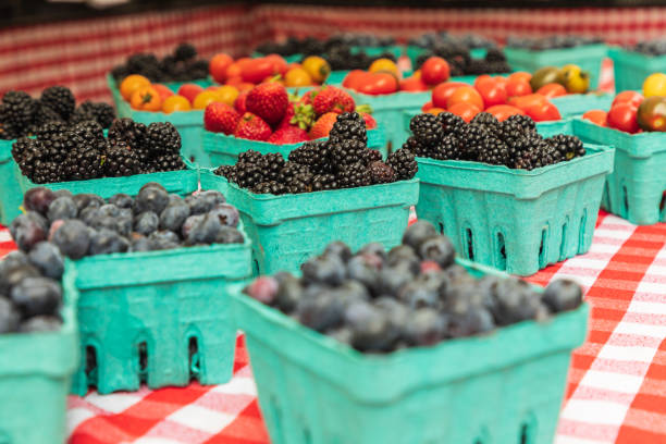 Blueberries for sale at a farmers market stock photo