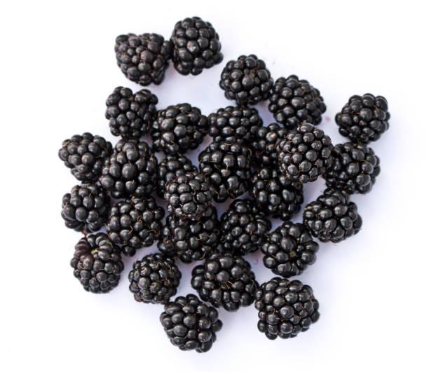 Blueberries in a Heart Shape – Foto